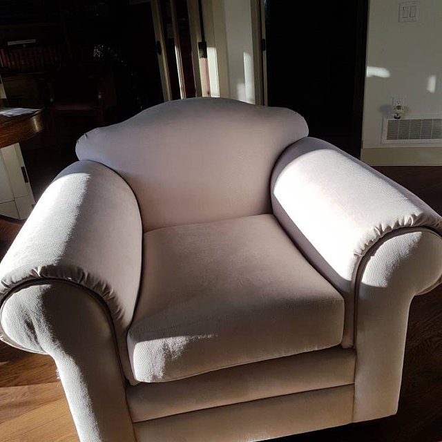 Patricia Sent A Picture Of Ammara30 Upholstered In Her Arm Chair